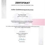 Zertifikat-Auditor-QMS-2017M